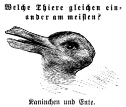 250px-Kaninchen_und_Ente